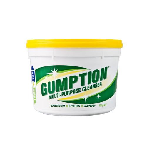 GUMPTION PASTE CLEANER 500GM